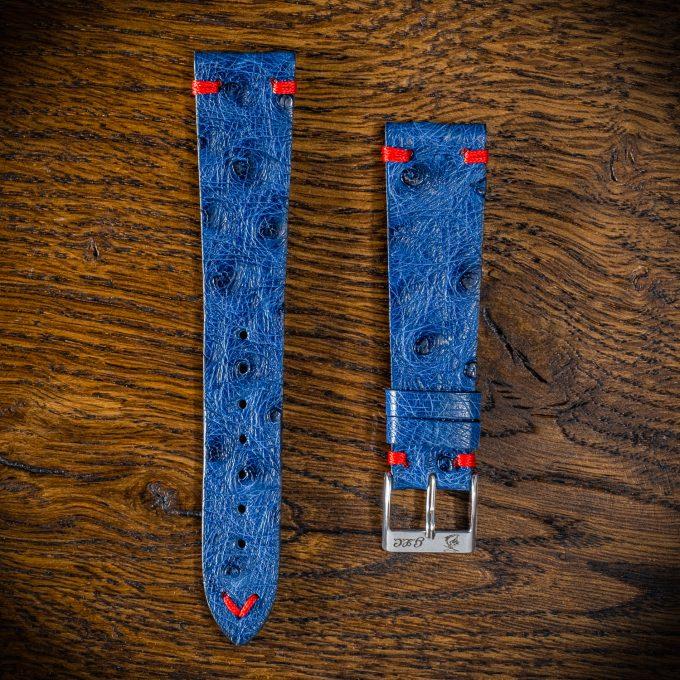 struzzo-blu-m1-filo-rosso (1)